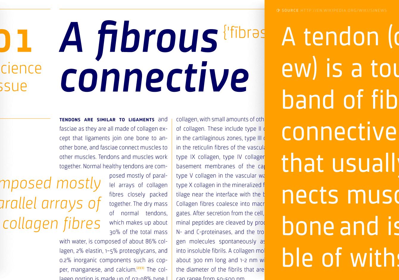 sinews, konstruierte technische text und logo schrift, quarish, sans, type, typografie, jakob runge, design, gestaltung, visuell, kommunikation